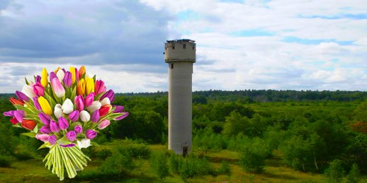 Доставка цветов Скрунде (Латвия). Купить цветы в Скрунде