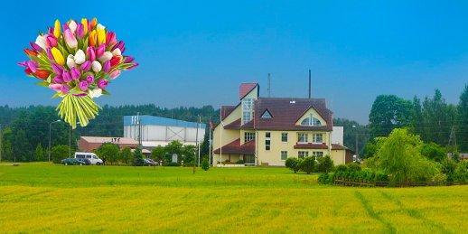 Доставка цветов Смарде (Латвия). Купить цветы в Смарде