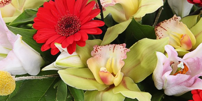 Fast the same day flower delivery. Get a fresh bouquet in 2-3 hours!