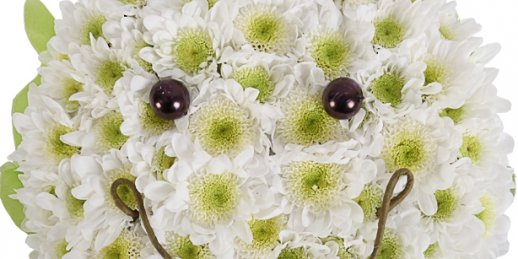 Do you wanttosendflowersonline cheap? Make an order in floristic studio KROKUS