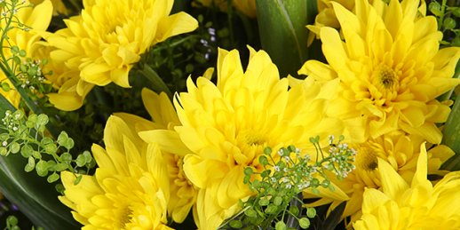 Order fresh 70th birthday flowers with delivery in Riga and all over Latvia