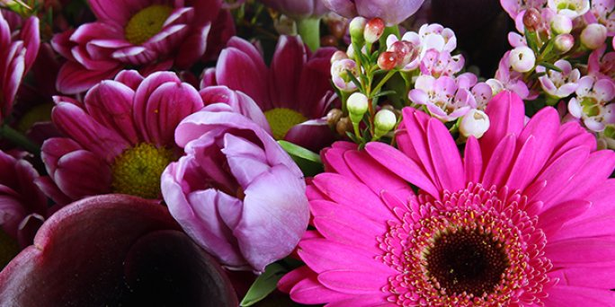 Online flower delivery cheap to the address in Riga and other Latvian cities