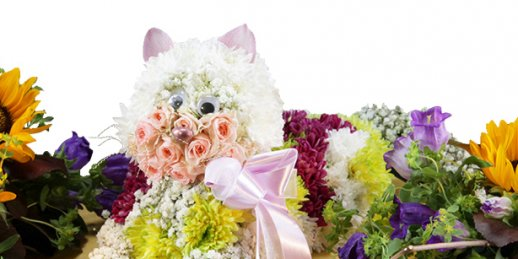 Mothers day flowers 2018 with delivery in Riga and all over Latvia