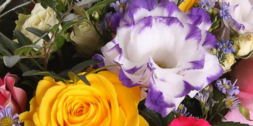 Order flowers online same day delivery all over Riga and Latvia from KROKUS