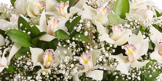 Buy mothers day flowers same day delivery in Riga and all over Latvia.