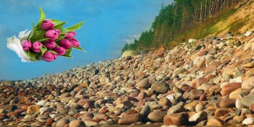 Ziedu piegāde Jūrkalne (Latvija). Nopirkt ziedus Jūrkalnē