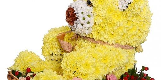 Ziedu piegāde Ainaži (Latvija). Nopirkt ziedus Ainažos