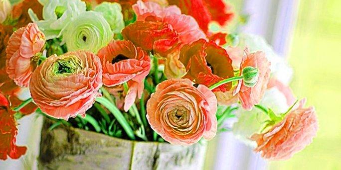 Что влияет на качество цветов