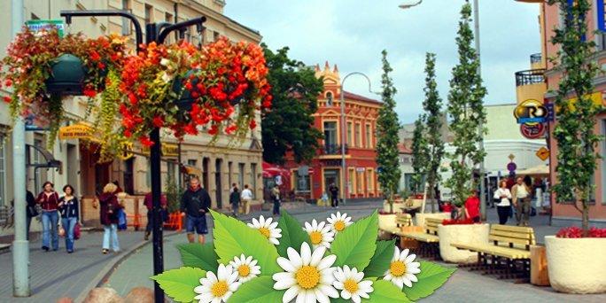 Ziedu piegāde Ventspils (Latvija). Nopirkt ziedus Ventspilī