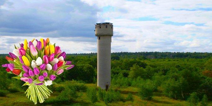 Ziedu piegāde Skrundā (Latvija). Nopirkt ziedus Skrundā
