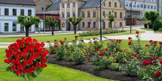 Ziedu piegāde Saldus (Latvija). Nopirkt ziedus Saldū