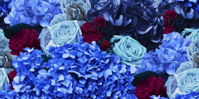 Purchase of a bouquet blue inexpensively. Order a blue flower bouquet in Riga, Latvia.