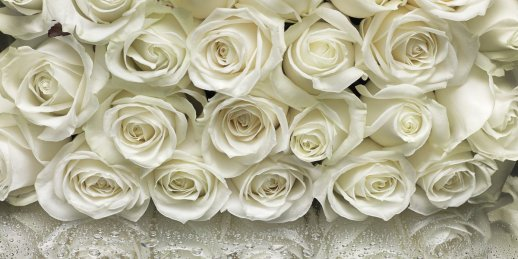 Buy 6 white roses inexpensively. Delivery of six white roses 40 cm to Riga, Latvia.