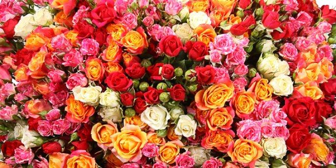 Kur lēti nopirkt ziedus Rīgā? Kur rīgā var nopirkt ziedus?