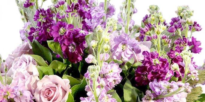 Ziedi internetā ar piegādi tajā pašā dienā Rīgā(Latvija)
