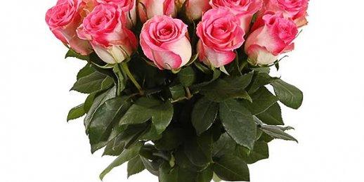 Kur nopirkt lielus rožu pušķus Rīga. Kur nopirkt lielus rožu pušķs