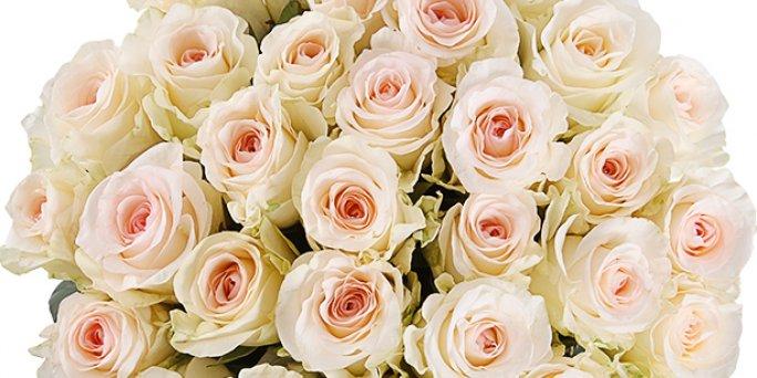 Kur var nopirkt ziedus pie 8am Imantā? Labāko ziedu piegāde Rīgā.