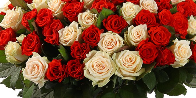 Ziedi ietērps piegādi.  Pielāgotas krāsas riga