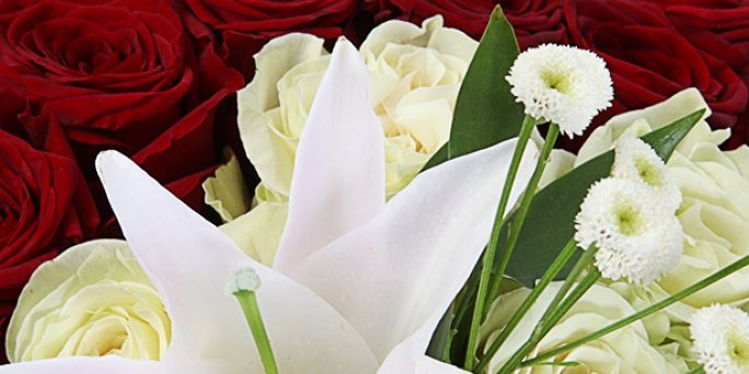 Lēta ziedu piegāde internetā. Piegāde uz jebkuru adresi Latvijā