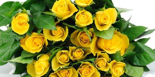 Vienas dzeltenas rozes piegāde uz adresēm Rīgā un citās Latvijas pilsētās