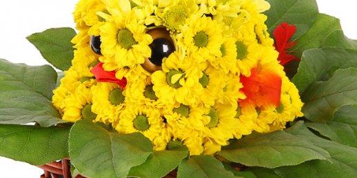 Pasūtīt lētu ziedu piegādi internetā uz adresi Rīgā un visā Latvijā