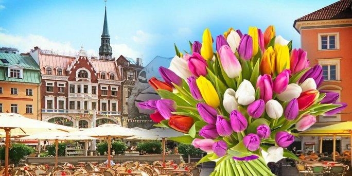 Цветы в Риге