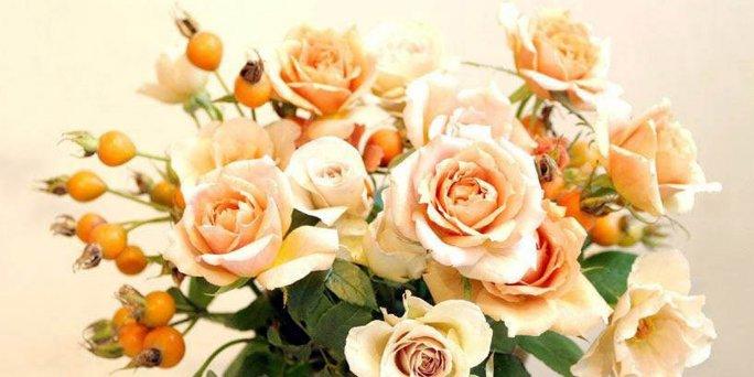 Ухаживаем за розами