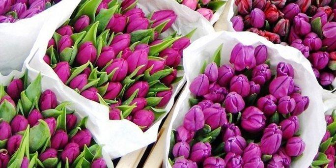 Букет цветов тюльпаны купить в Риге