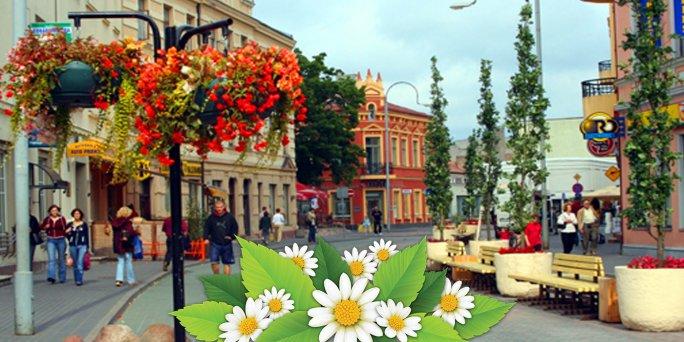 Купить цветы в Вентспилс (Латвия). Купить цветы в Вентспилсе