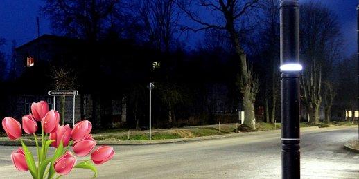 Доставка цветов Карсава (Латвия). Купить цветы в Карсаве