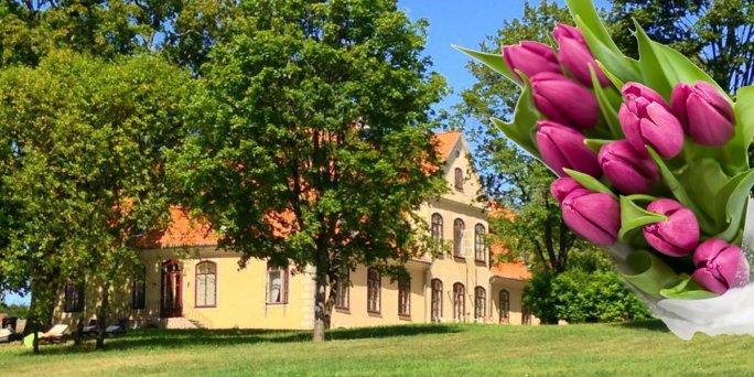 Доставка цветов Лиепупе (Латвия). Купить цветы в Лиепупе