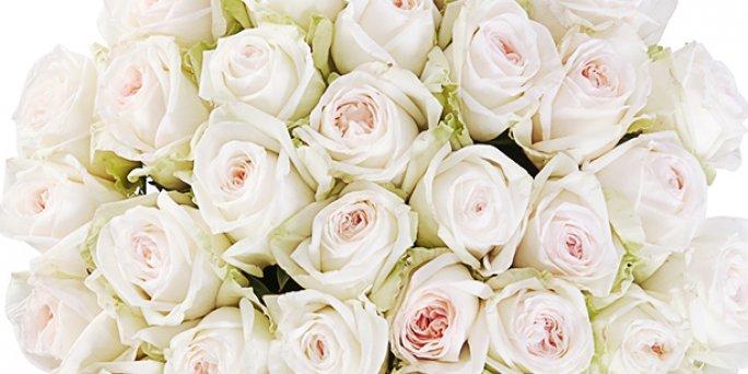 Как вручить и как купить цветы с доставкой в Риге: цветы белые розы.