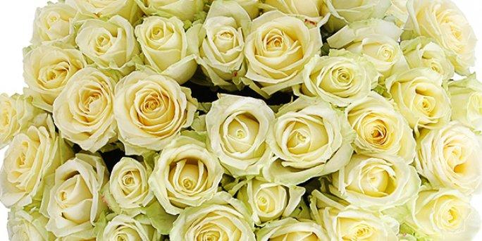 Необычное украшенье: Как купить цветы в Риге?