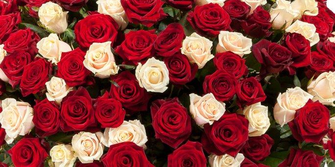 Как вручить и где купить цветы с доставкой в Риге: букет из орхидей.