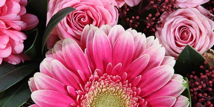 Что купить и где заказать цветы с доставкой в Риге: подсолнухи цветы .