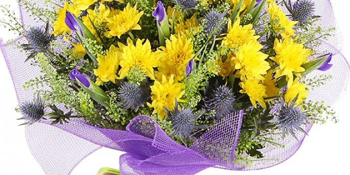 Как купить цветы с доставкой в Риге: огромный букет ромашек.
