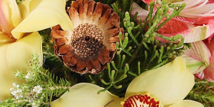 Роскошь и притяжение цветов: Где можно заказать цветы в Риге?