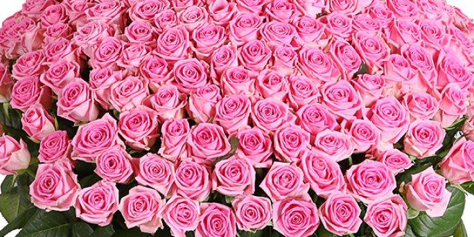 Ищете запоминающийся подарок? Возможно, вам нужны цветы в Риге!
