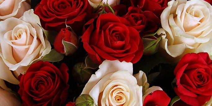 Заказ цветов Рига: Яркие композиции из цветов – это своеобразный вызов.