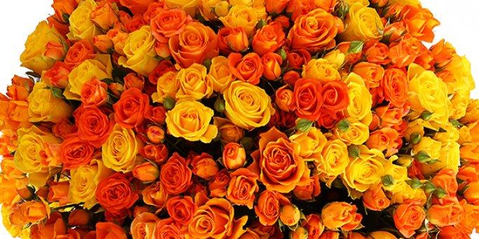 Купить цветы в Риге: Цветы на празднике - пять ключевых советов.
