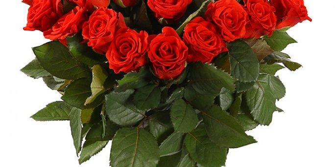 Лучшее из доступного: Как быстро купить цветы в Риге?