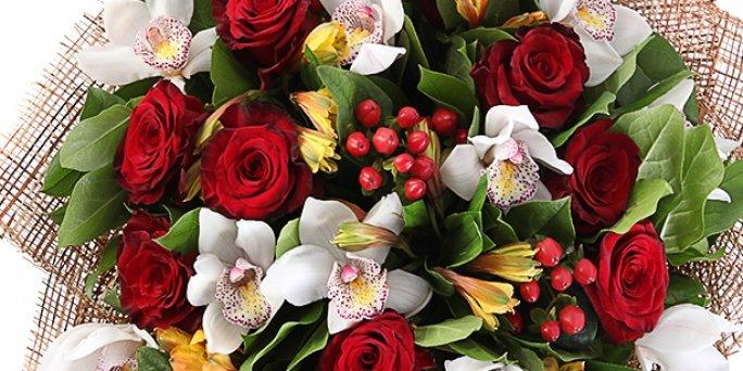 Заказать цветы в Риге: Комнатные растения - Точка зрения флористов.