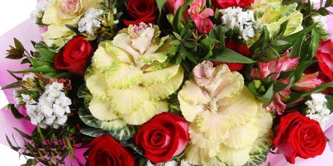 Заказ цветов Рига: Комнатные цветы.