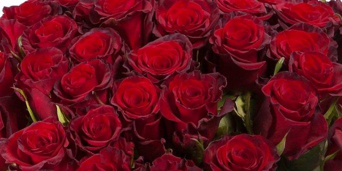 Ищете уникальный подарок? Обратите внимание на цветы в Риге!