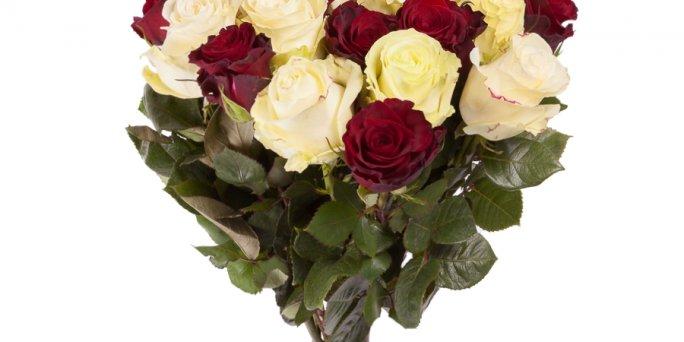 Заказ цветов Рига: Какие цветы купить возлюбленной?