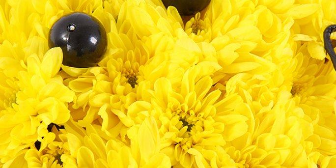 Роскошь или лаконичность?: Где можно заказать цветы в Риге?