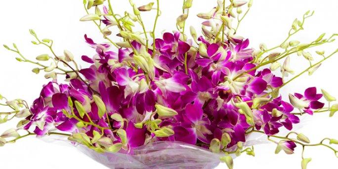 Как вручить и где купить цветы в Риге: купить цветы в шляпной коробке.