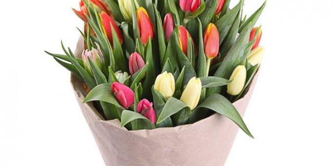 Как выбрать цветы в Риге: цветы букетов игрушек.