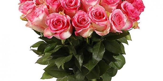 Как выбрать цветы в Риге: школьные букеты.