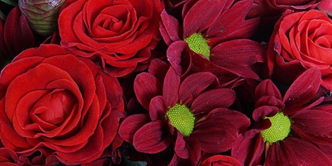 О чем не помешает помнить, покупая цветы в Риге?